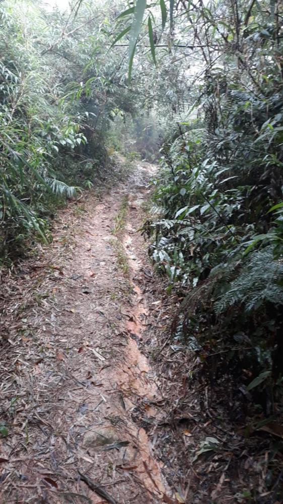 Ciclista se perde em trilha durante a madrugada